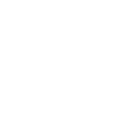 Apple Blossom Parade Saturday, June 1